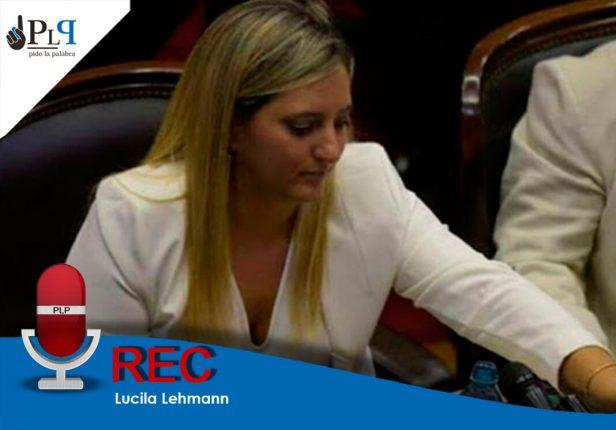 Lucila Lehmann, consumer, periodismo,